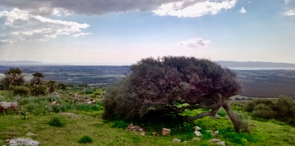 guided-tour-monte-sirai-sardinia