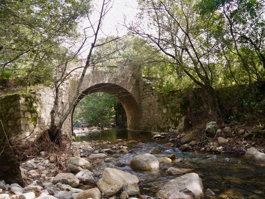 foresta-san-pantaleo